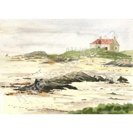 Misty Crannag by Roger Gadd