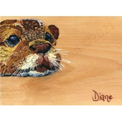 Teddy by Diane Patterson