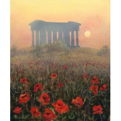 Penshaw Sunset Poppies by Robert Wild