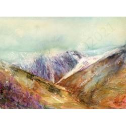 A Lakeland View by Vivian Riches