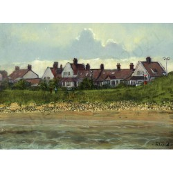 Whitburn Cottages by Robert Wild