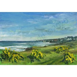 Gorse at Craster 2 by Roger Gadd